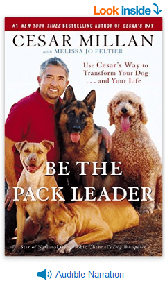 Be-the-Pack-Leader-Use-Cesar's-Way-to-Transform-Your-Dog