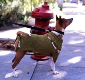 how to make your dog a sweater no sew