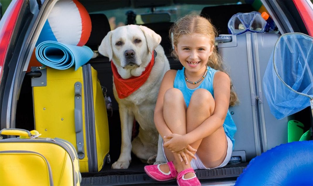 dog-summer-with-kid