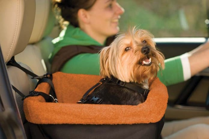 dog car seats