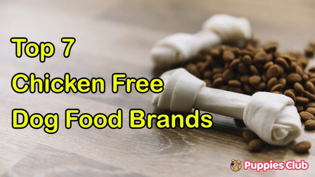 Top 7 Chicken Free Dog Food Brands